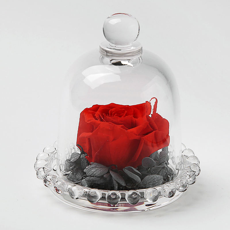 Factory Direct Wholesale Best Gift Decorative Clear Glass Dome with Handle Glass Dome with Glass Ball Base