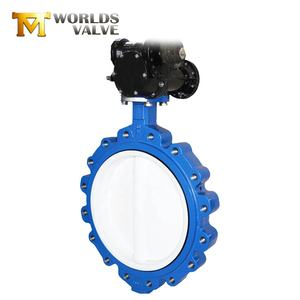 Lug type worm gear resilient seated butterfly valve