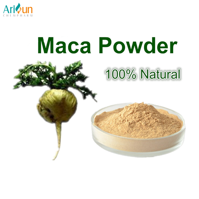 Maca Extract Manufacturer Supply Most Competitive Powder Root