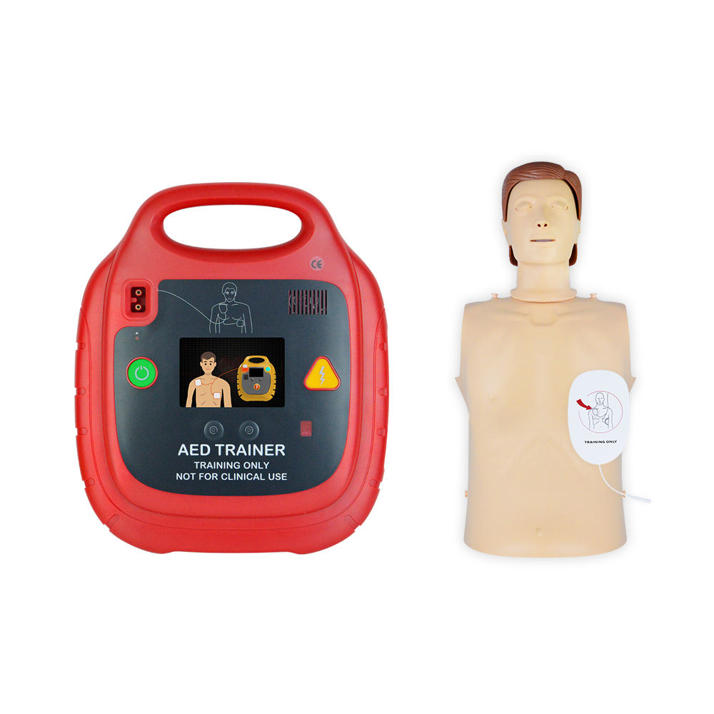 <span class=keywords><strong>CPR</strong></span> <span class=keywords><strong>kit</strong></span> aed automatisierten externe defibrillator trainer