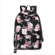 2019 new printed backpacks, women's Korean version of nylon waterproof backpacks