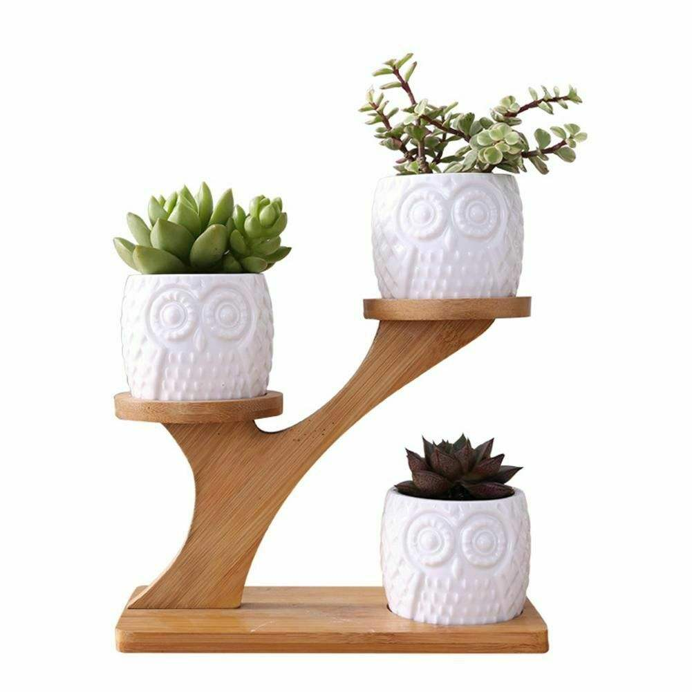 3pcs Owl Succulent Pots with 3 Tier Bamboo Saucers Stand Holder White Modern Decorative Ceramic Flower Planter Plant Pot Drainag