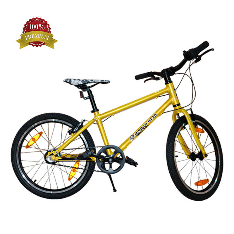 High Selling Fashionable Beach Cruiser Bike/City Bike/ Lady Travel Bicycle