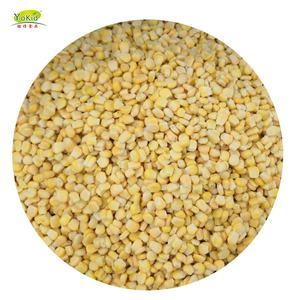 High Quality IQF Frozen Bulk Sweet Corn Of Price Per Ton