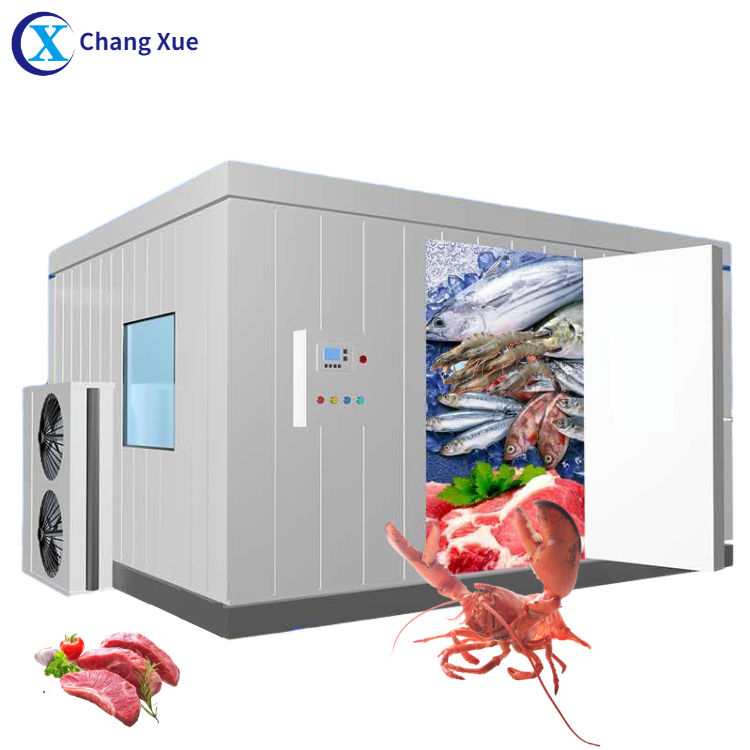 Walk in freezer manufacturer chambre froide project price fish store mobile mini potato storage cold room