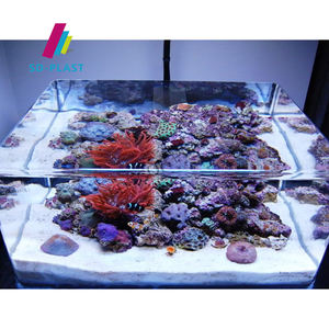 Clear PMMA Plexiglass Acrylic Aquarium Fish Tank