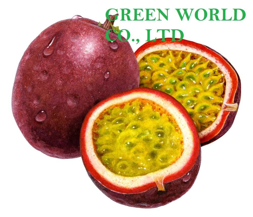EXCELLENT FROZEN PASSION FRUIT PUREE WITH SEED, RICH IN VITAMIN AND FIBER