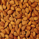 Wholesale Almond Kernel / Raw Natural Almond Nuts/ American Almond