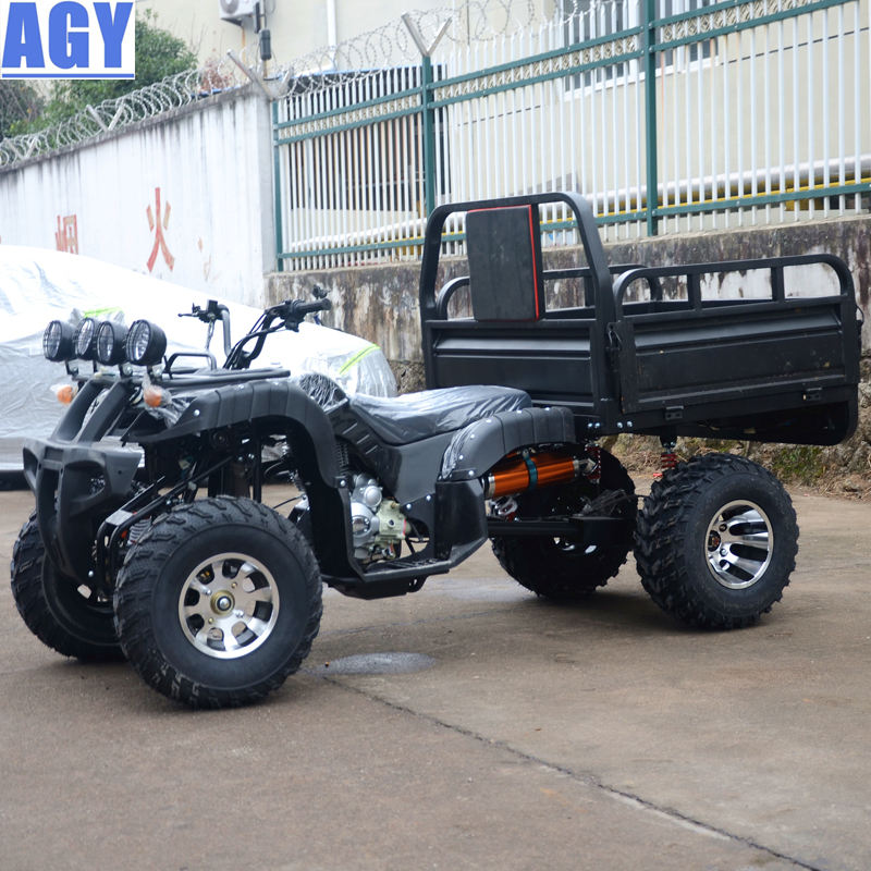 AGY to the edge and back 250cc quad atv 4x4 farm utility