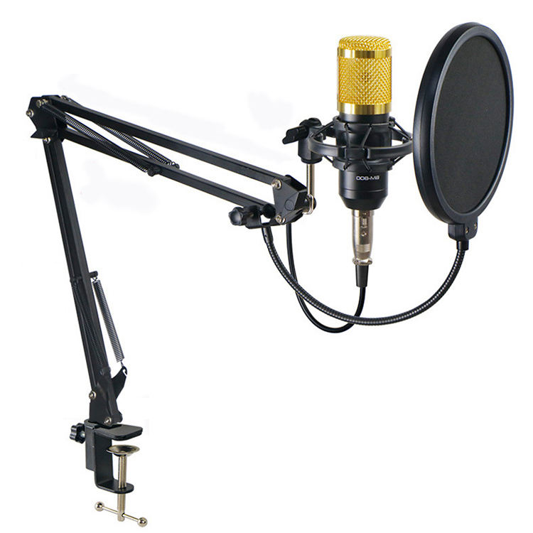 Weston best price bm 800 microphone de studios