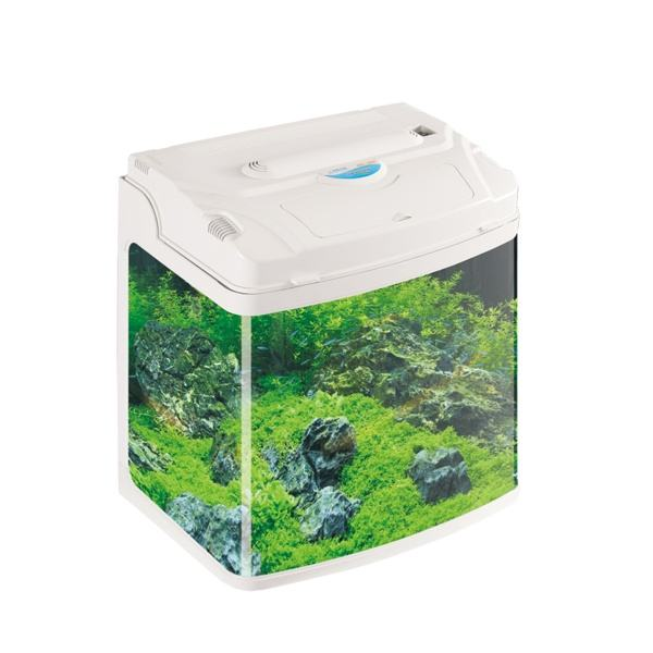 Don't have to change water ecosystem fish tank plastic aquarium