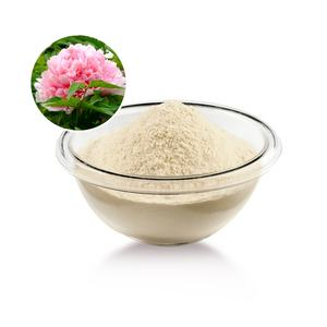 Extract plant peptides grade cosmetique protein hydrolysed drink powder food peptides