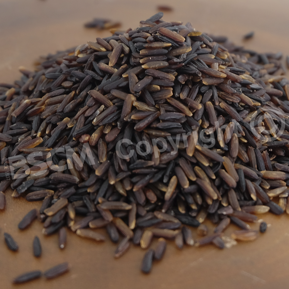 The finest quality black Jasmine rice from Thailand