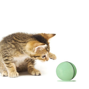 2020 new design high quality USB electric pet toys electric cat LED flash ball Laser Smart Cat Toys