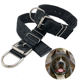 Eco Friendly Buckle Collar Cane Hund Eco Friendly 2'' Wide Nylon Polyester Polypropylene Cotton Military Dog Collar With Large Metal Roller Buckle