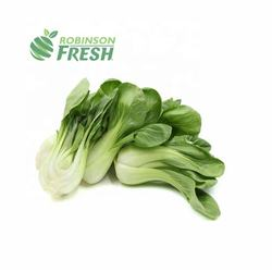 US Grown Vegetables Bok Choy Pak Choi Robinson Fresh MOQ 30 Lbs Quick Delivery in US