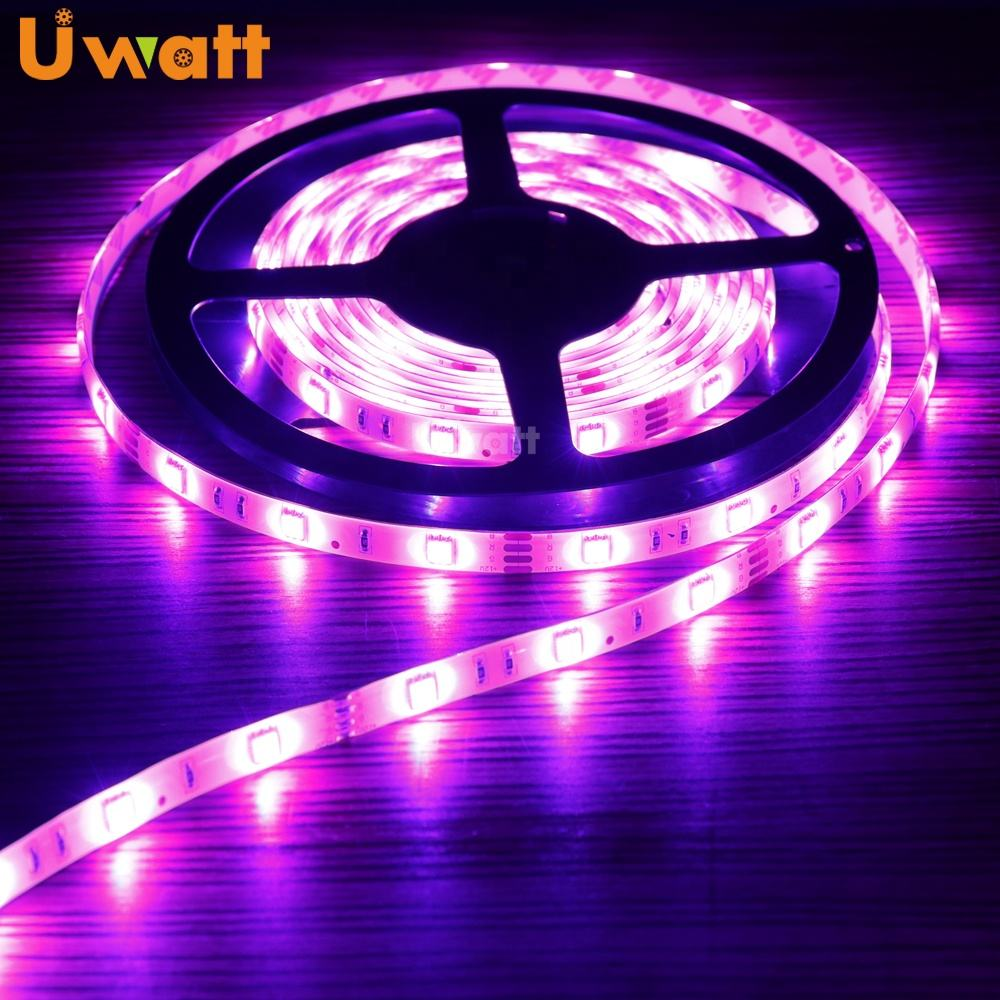 Factory Outlet SMD 5050 Colorful Decoration IP65 12V RGB LED Light Strip For TV Background