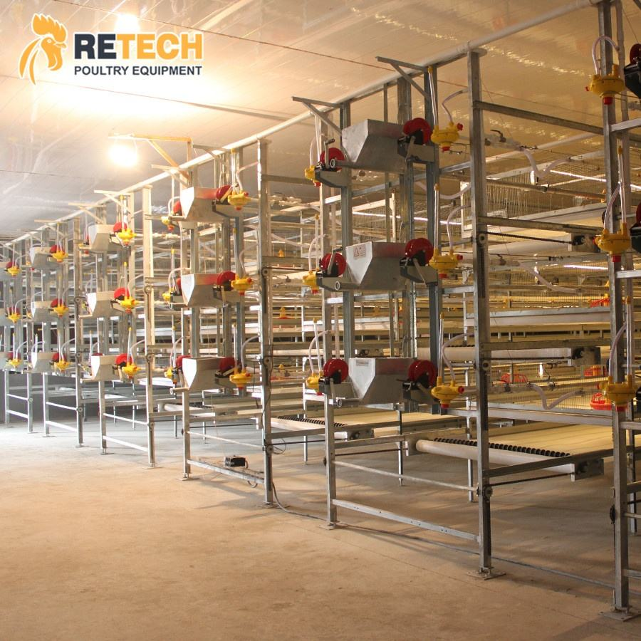 Export Kenya Galvanized Broiler Chicken Cage Hot Sale H Type Poultry Farm Battery Cages