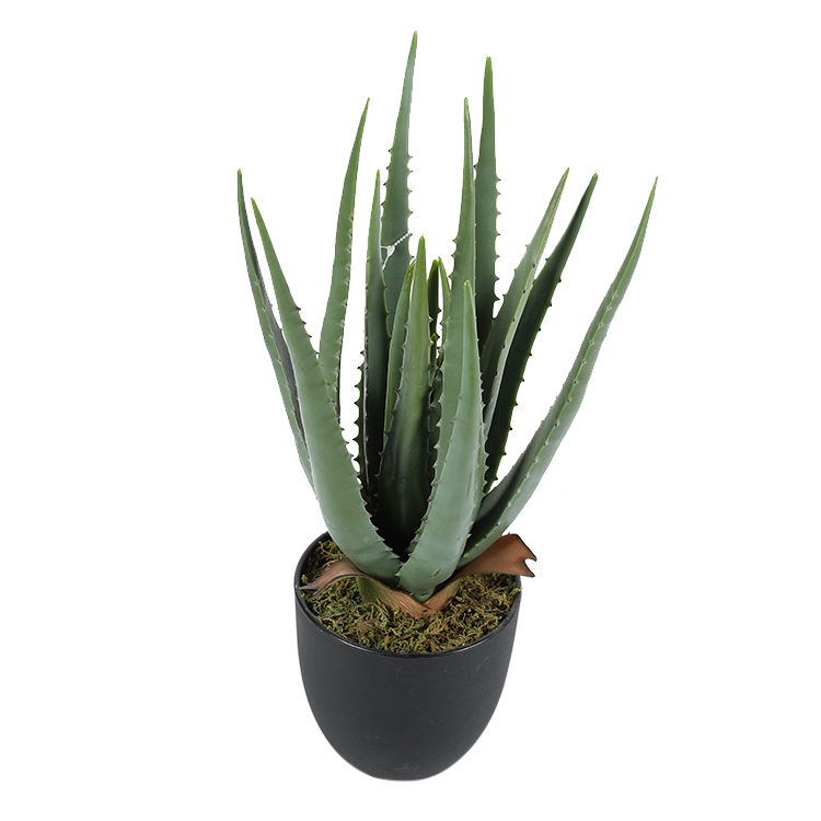 Artificial plant aloe Potted Plant Pastoral home creative decorations No need care for artificial plants