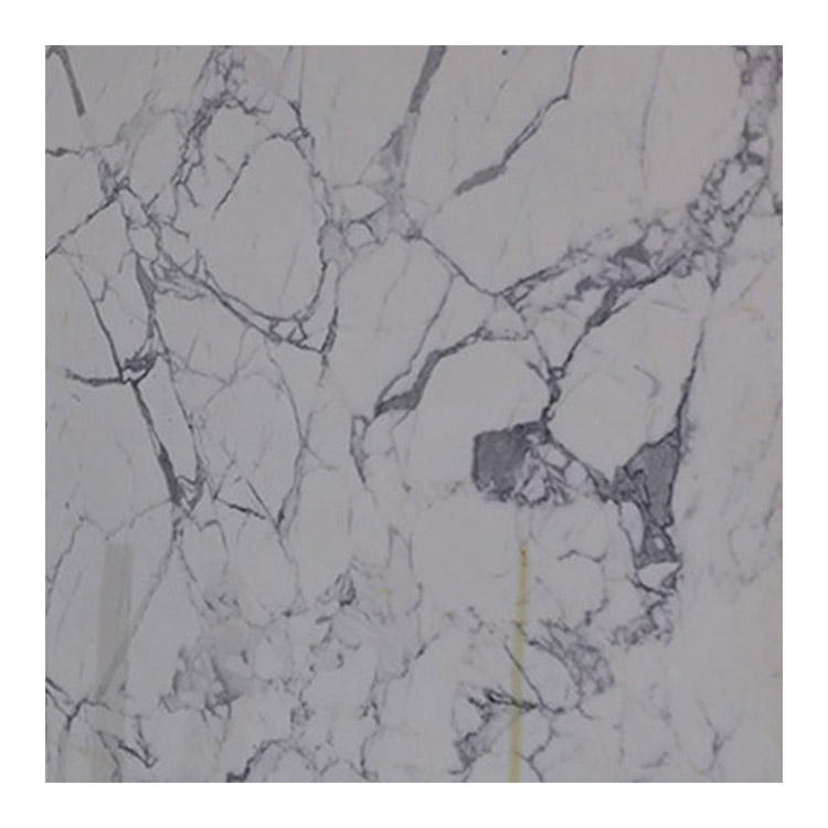 Arabescato Tile And Floor Slab Wall Decoration Full Body Cut-To-Size Statuary Marble Stone