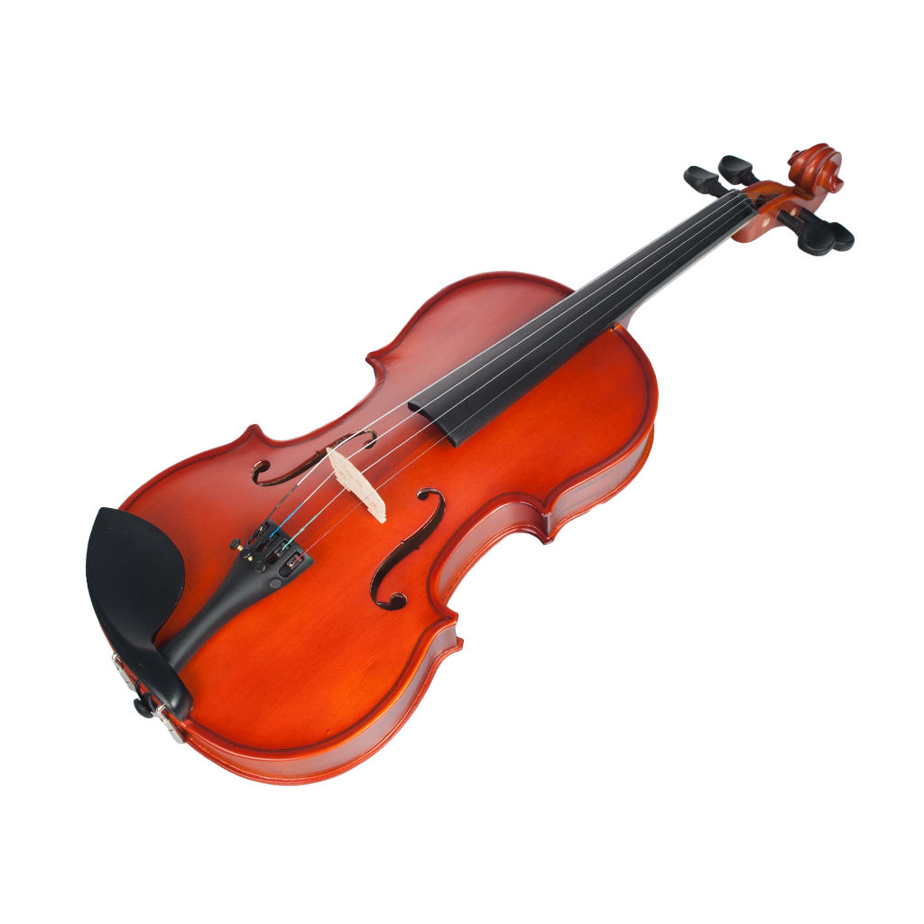 NAOMI 4/4 Matte Violin With Case+Bow+Rosin Set Natural Color Violin