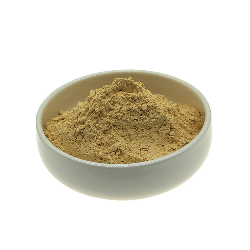 Factory supply hot selling best price noni fruit powder/noni fruit juice powder/noni powder
