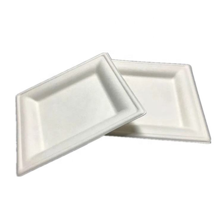 Eco Friendly Disposable Degradable 6'' Sugarcane Compostable Square Bagasse Cake Plate Dishes