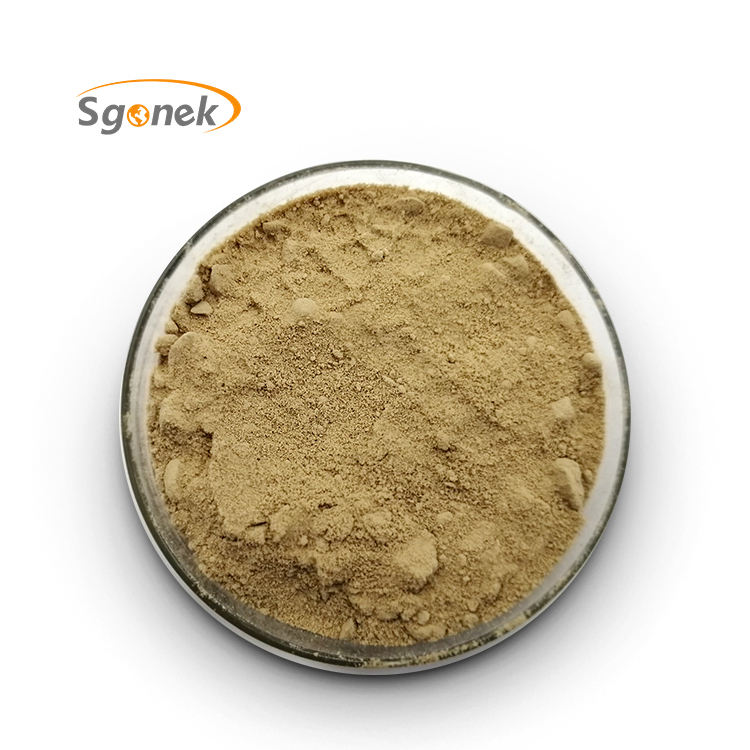 Hot selling Wholesale acid alkaline powder food grade acid Protease Enzyme in stock