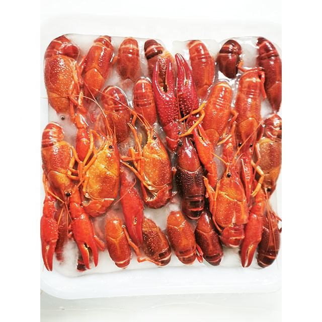 frozen whole crayfish in vacuum pack
