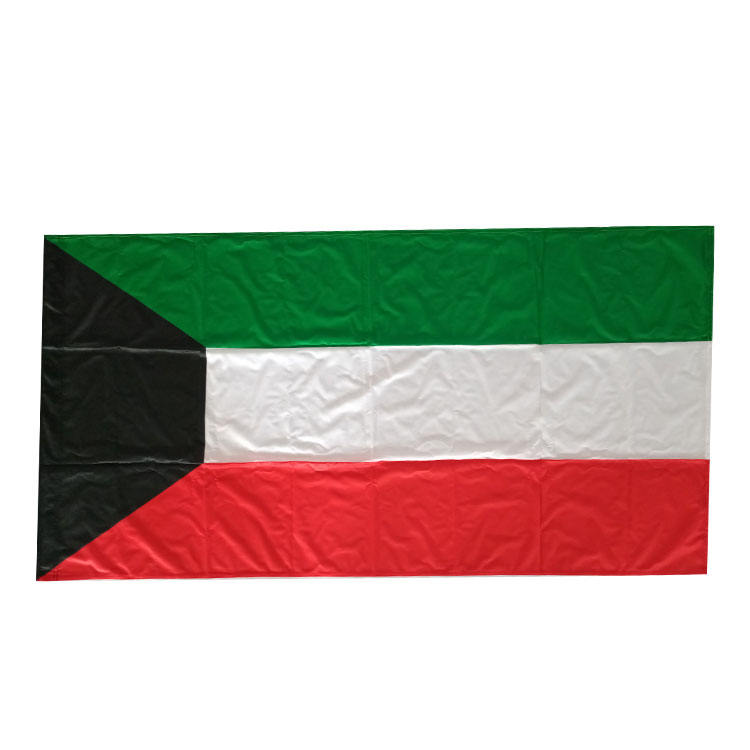 100 % polyester flag national flag with good quality nylon banner