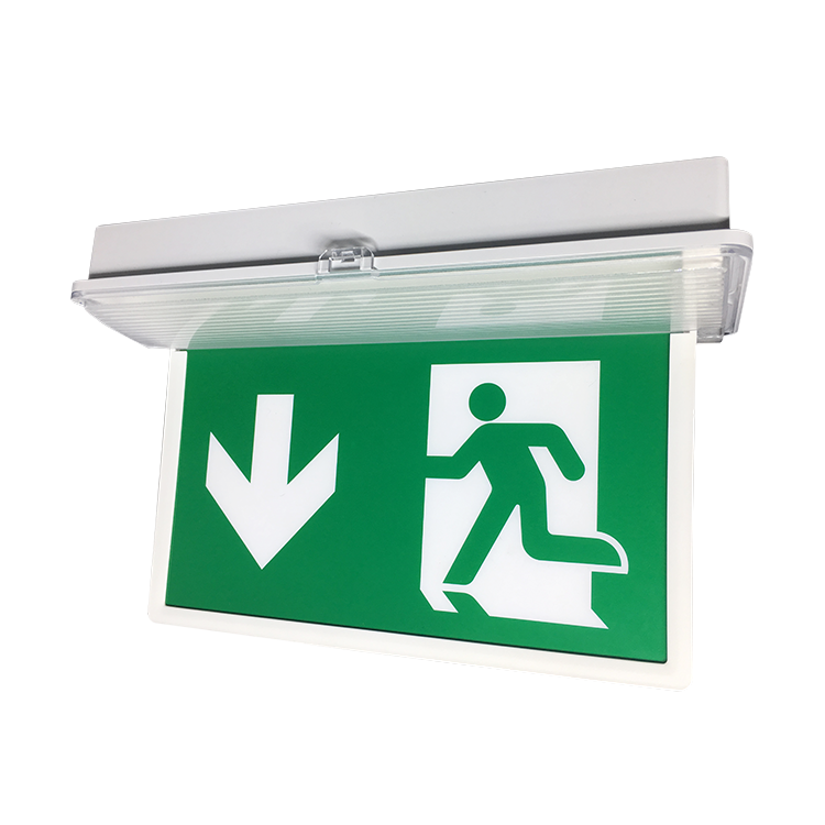 Outdoor Led Sign Exit