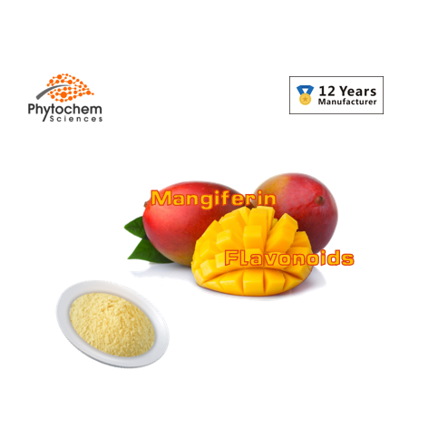 organic instant mango powder drink flavor mango juice powder