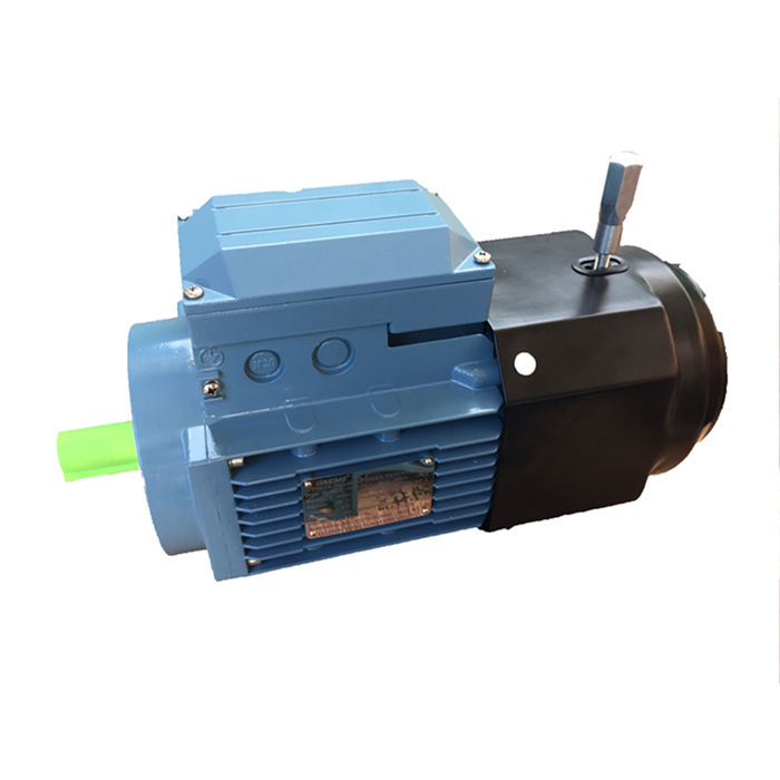 210V ar transmission ac motor speed controller 4000w ac motor with gearbox 220v 3 phase .5hp electric motor reduction gearbox