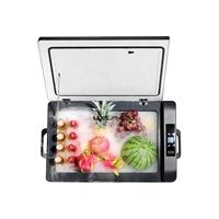 High Quality Waeco Mini Portable Refrigerator 12V/24V Small Compressor Car Fridge Cooler