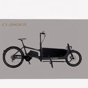electric transport cargo bike with 2 wheel middle motor alloy 6061 MTB city bike tricycle dutch