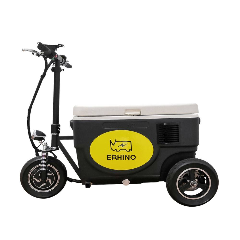 OEM European style electric powered 2021 new ice electric cooler 3 wheel scooter for outdoor
