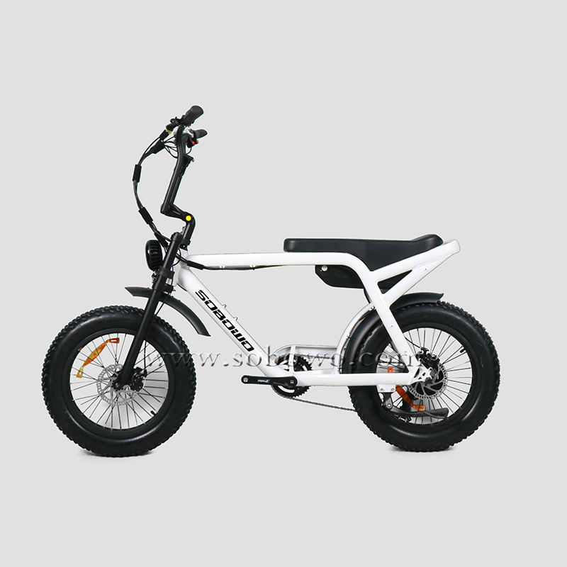 Retro Fat Tire Chinese Electric Bike For Sale Model S82-1
