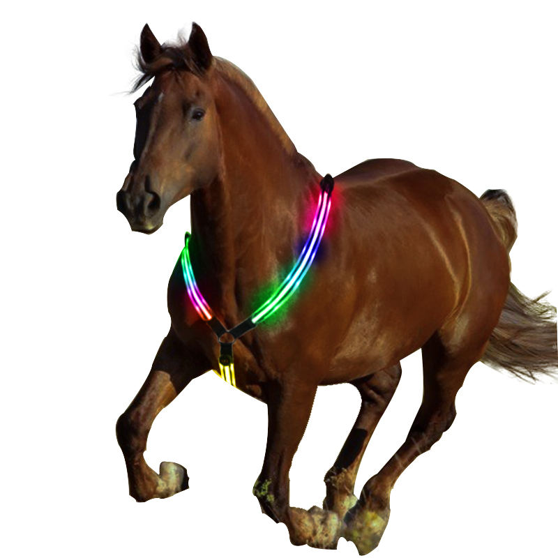 Nylon safety led flash horse harness with rechargeable battery