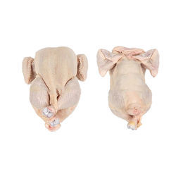 Halal Whole Frozen chicken available