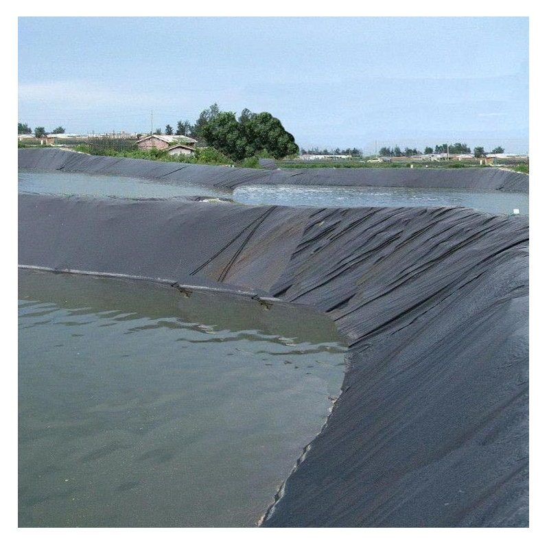 HDPE Geomembrane Waterproofing Pond Lining Dam Liner
