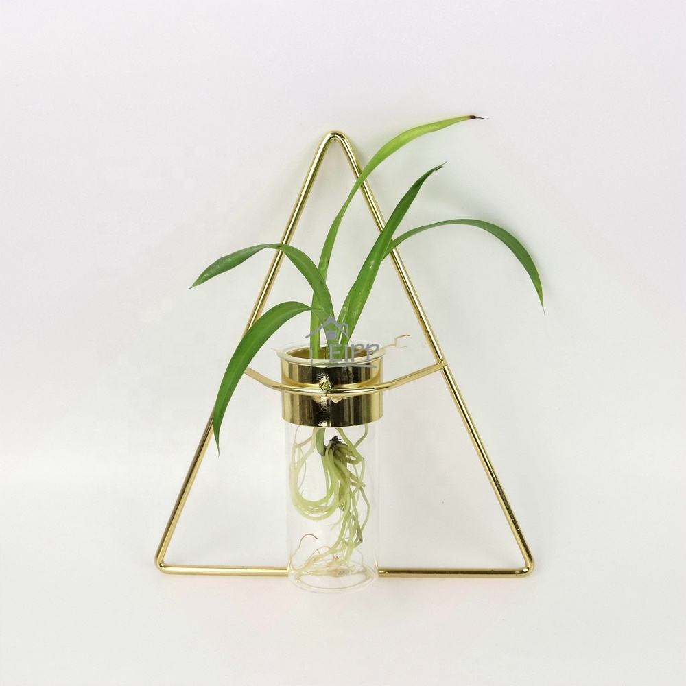 Wholesale New Design Geometric Gold Black Wall Metal Hangings Air Plants Glass Vase For Home Decor