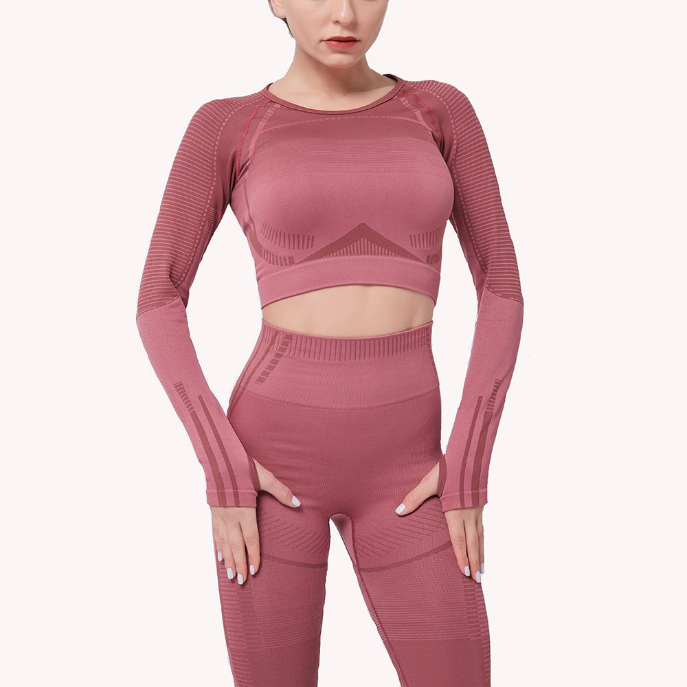 2020 Fitness Gym Clothes Gym Wear Women Sets Seamless Sports Cropped Top And Yoga Leggings Set For Workout