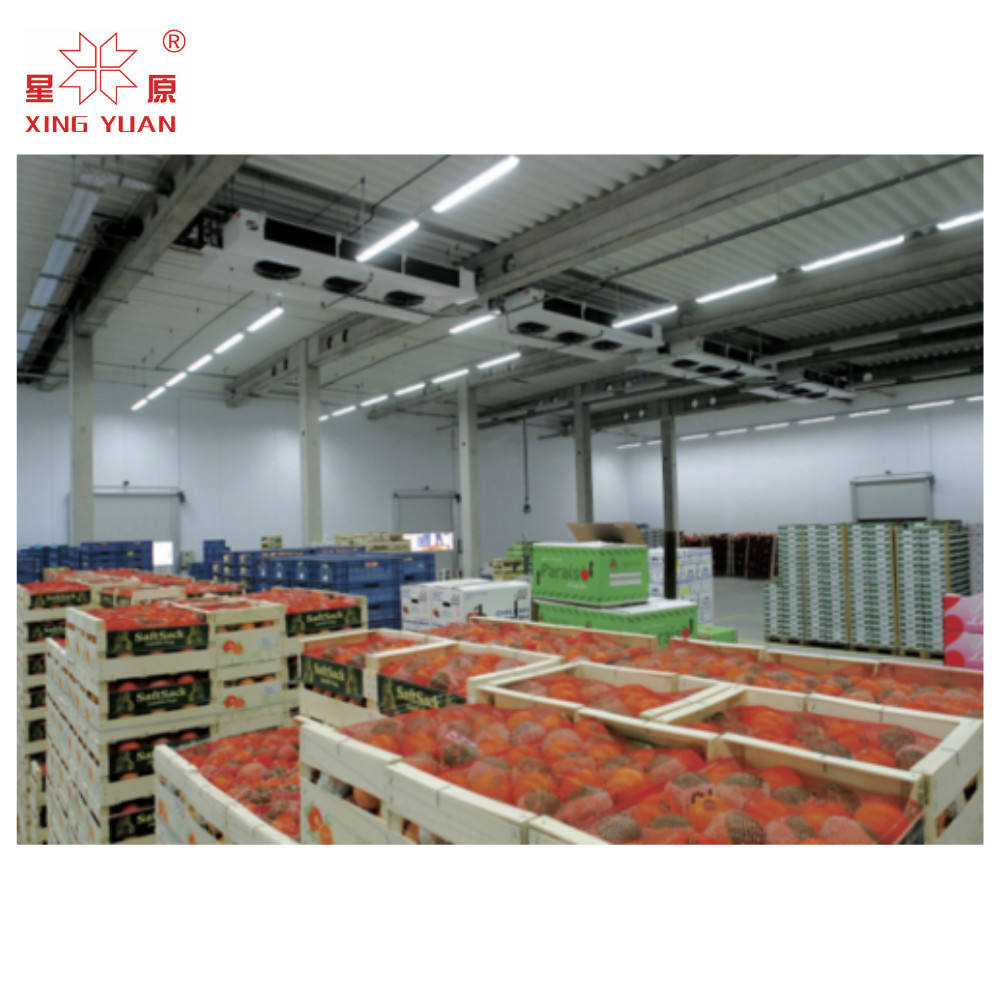 -5~10C Fruit and vegetable cold room storage warehouse
