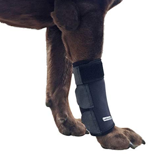 Canine Front Leg Compression Dog Brace Wrap knee support for Protects Wounds Brace Heals