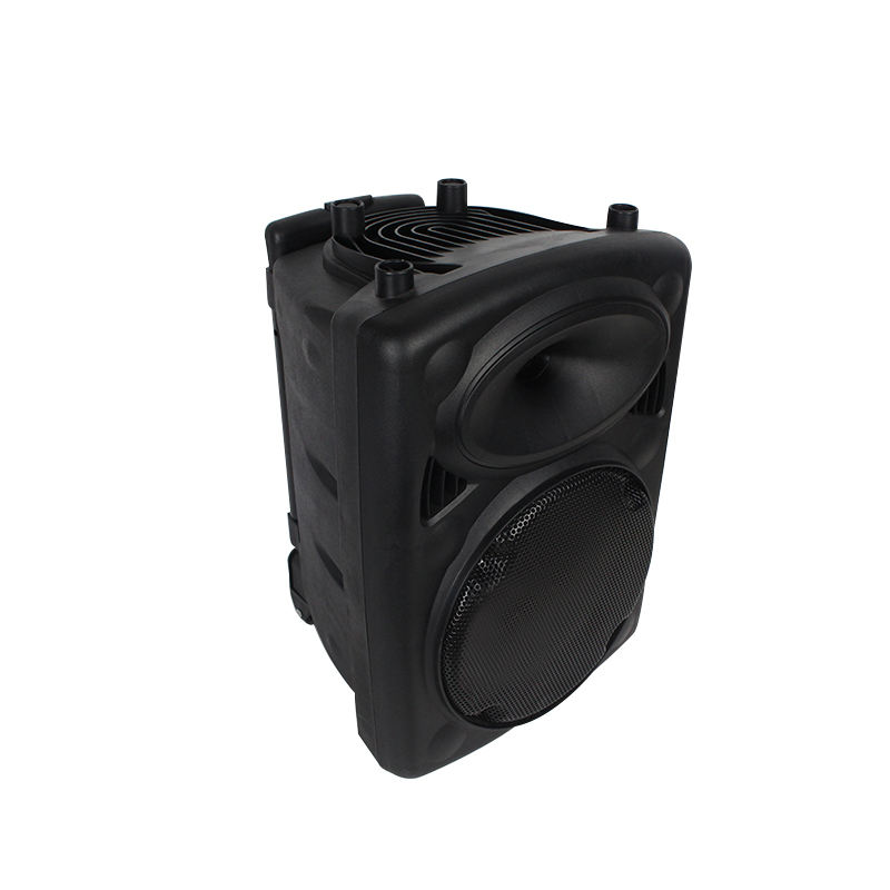 Outdoor Trolley Bluetooth Rechargeable Pa Speaker With Guitar Volume