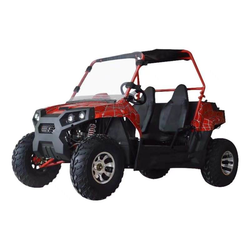 2019 Nieuwe mini quad 200cc UTV 4X4 side by side twee seat off road buggy