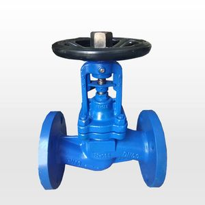 DIN pn16 cast iron bellow seal globe valve/ARI globe valveCustoms Data