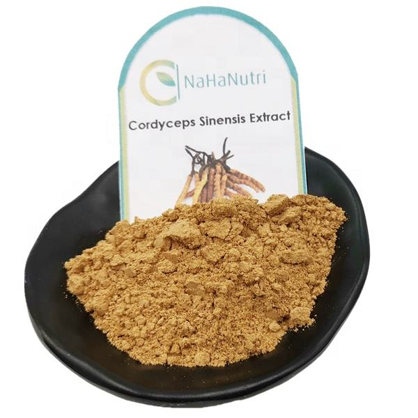 Natural Organic Cordyceps Sinensis Extract With Private label 100g/bag