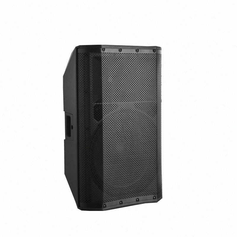 Nice quality professional portable and wireless active class D amplifier powered 15 inch plastic stage PA Speaker