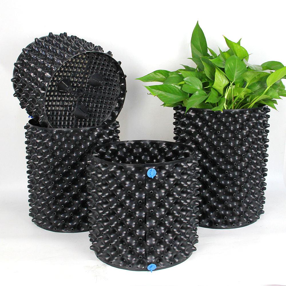 En Venta de jardín jardinera poda contenedor aire raíz ollas